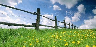 Земельный участок молодой семье